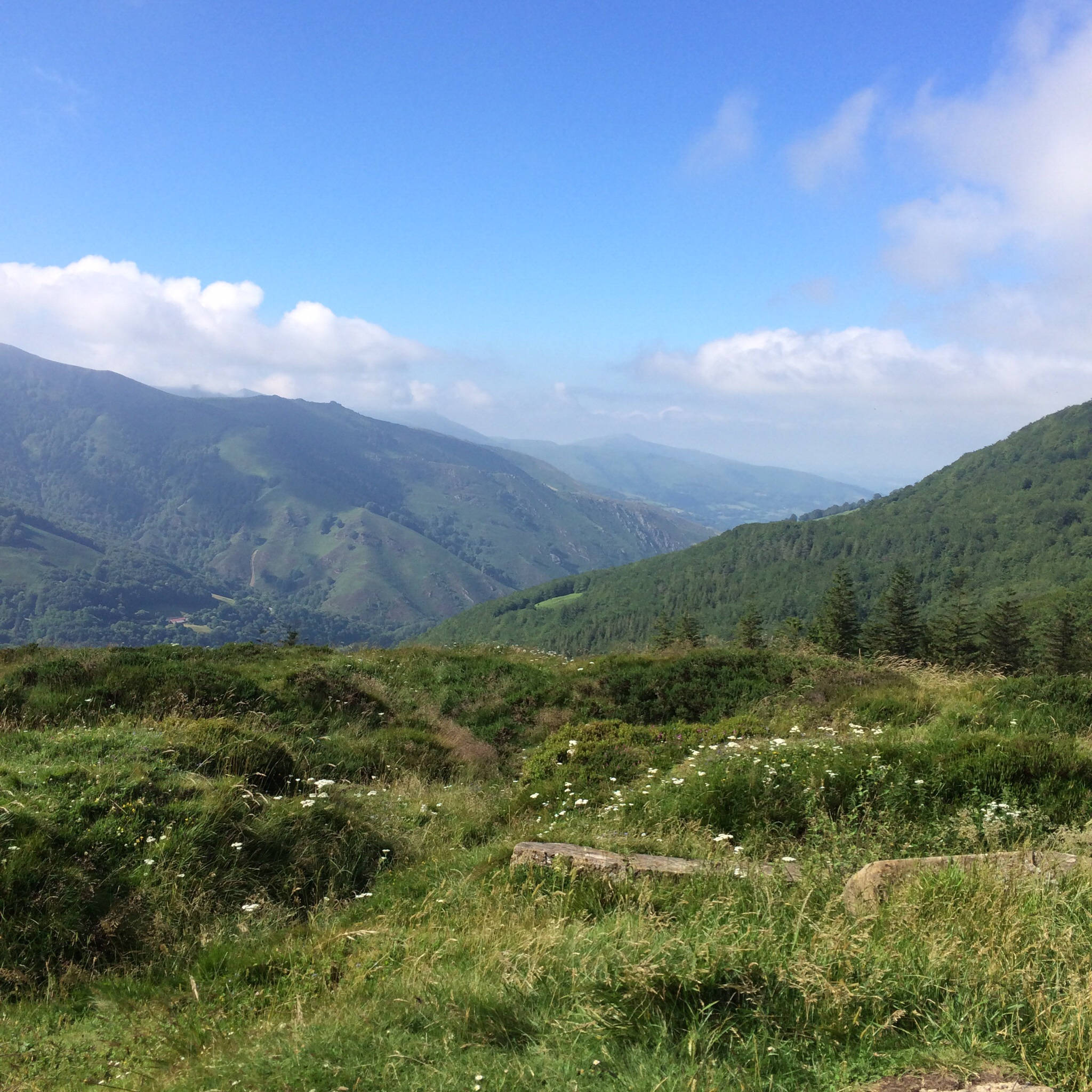 This is a look Eastward from the highest point on the pilgrim journey to Santiago.