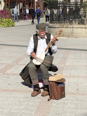 Street Musician in Novi Sad