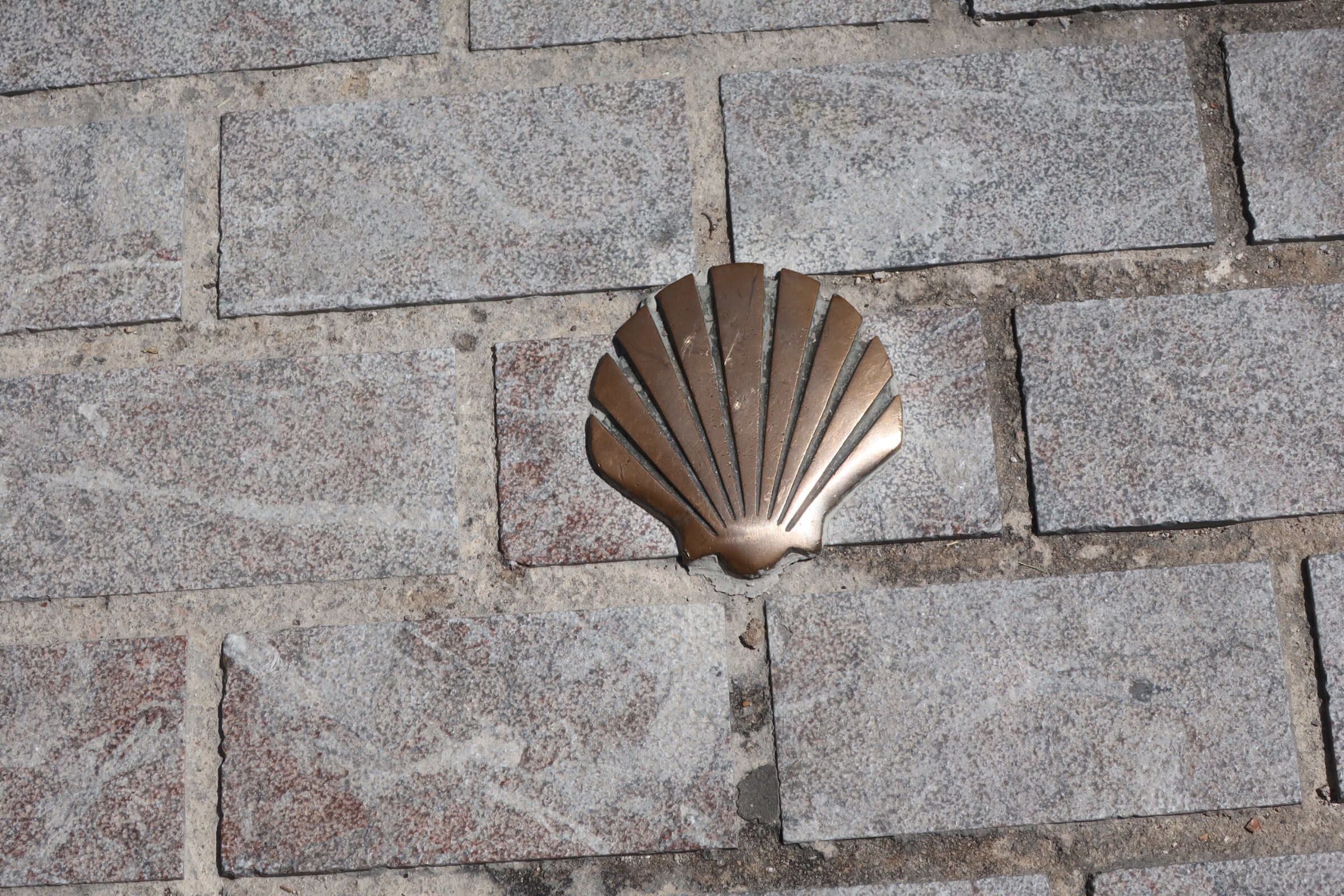 The sign of the scallop shell is everywhere