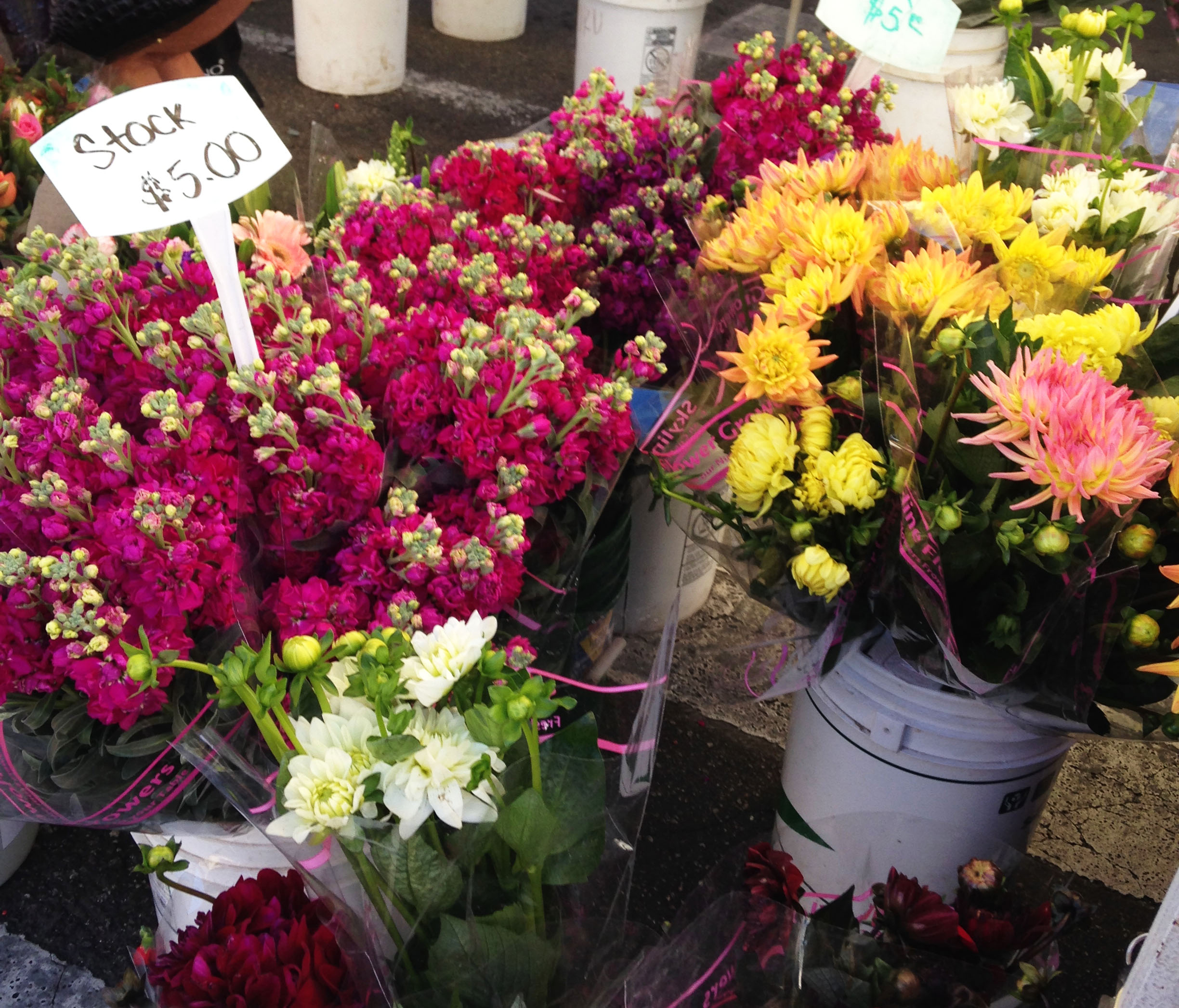 FLowers are always part of a Farmers Market journey.