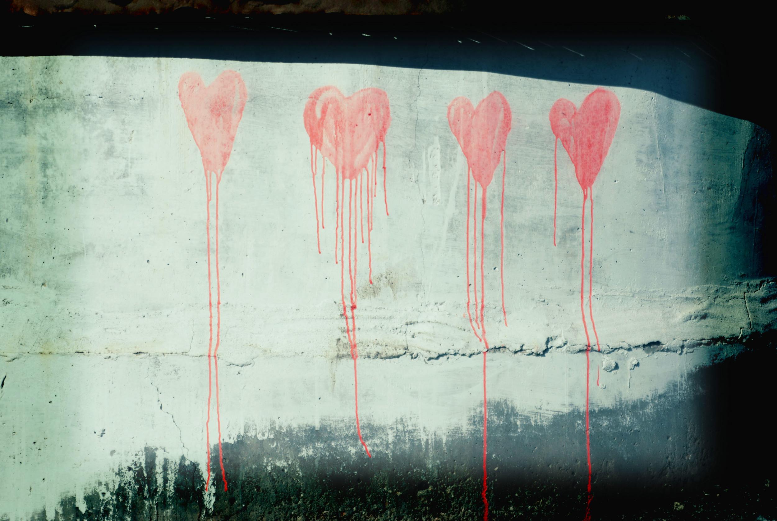 SS_bleedinghearts.jpg