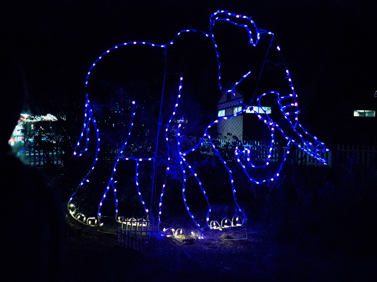 2017-12-30 Oakland Zoo - ZooLights-10.jpg