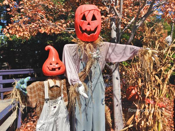 Fun scarecrows