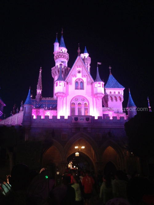 Backside of Sleeping Beauty Castle