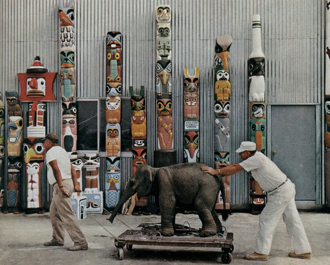 A new Jungle Cruise elephant. Photo: National Geographic 1963