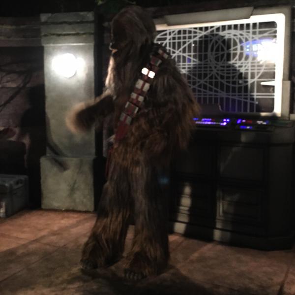 chewbacca-star-wars-half-2016.jpg
