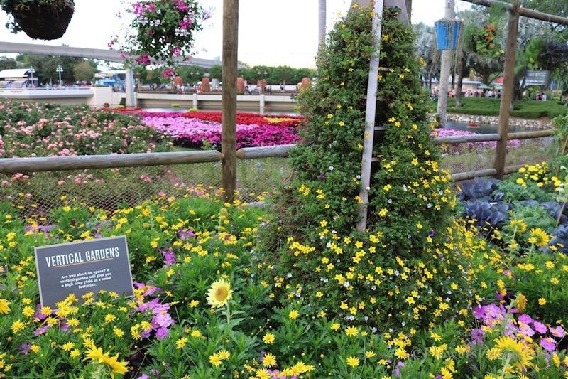 epcot-international-flower-and-garden-festival-vertical-gardens