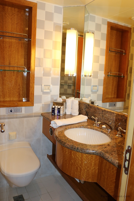 disney wonder concierge small bathroom.JPG