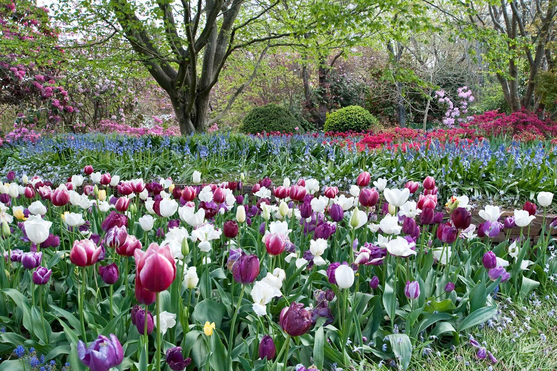 Warren-Hinder-Flower-Garden-Leura.jpg