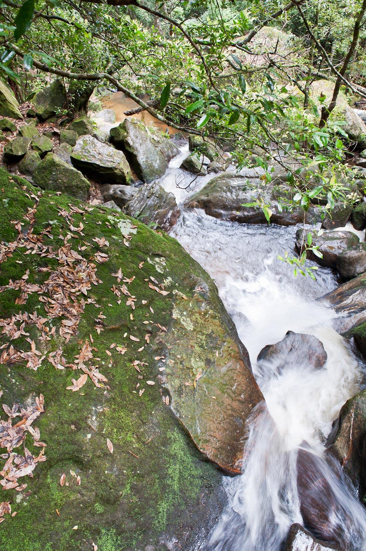 Warren-Hinder-LR-Falls-Federal-Pass-Cooks-Crossing-Base-Katoomba-Falls.jpg