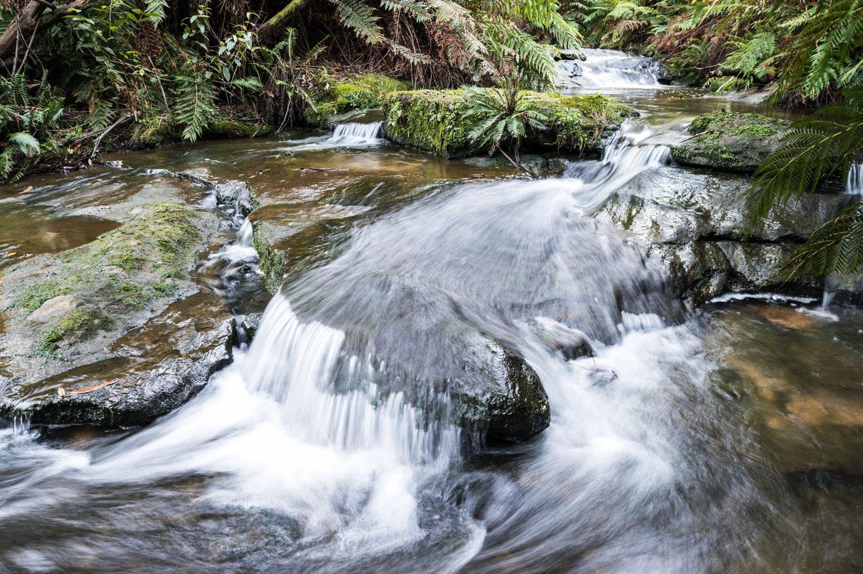 Warren-Hinder-stream-detail-Leura-Cascades.jpg