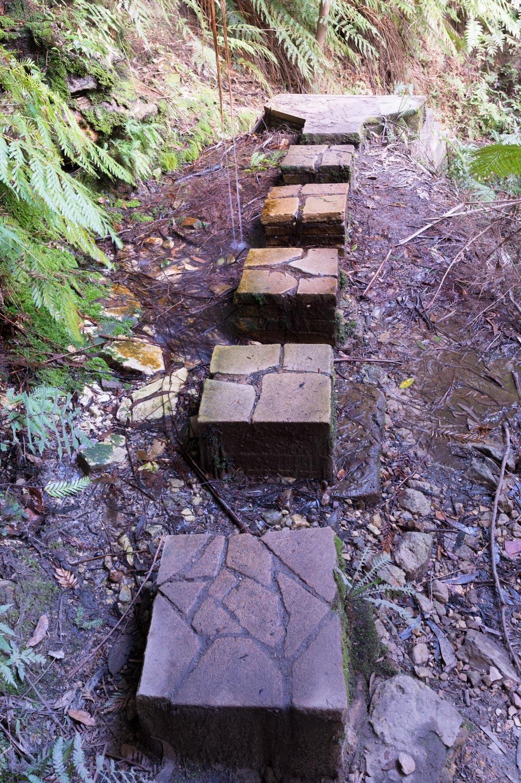 Warren-Hinder-Gordon-Falls-Path-Detail-detail.jpg