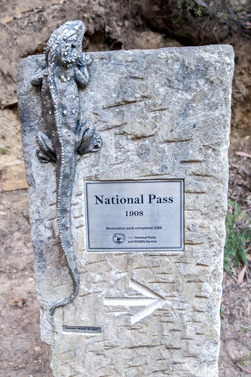 Warren-Hinder-LR-Goanna-Sign-National-Pass.jpg