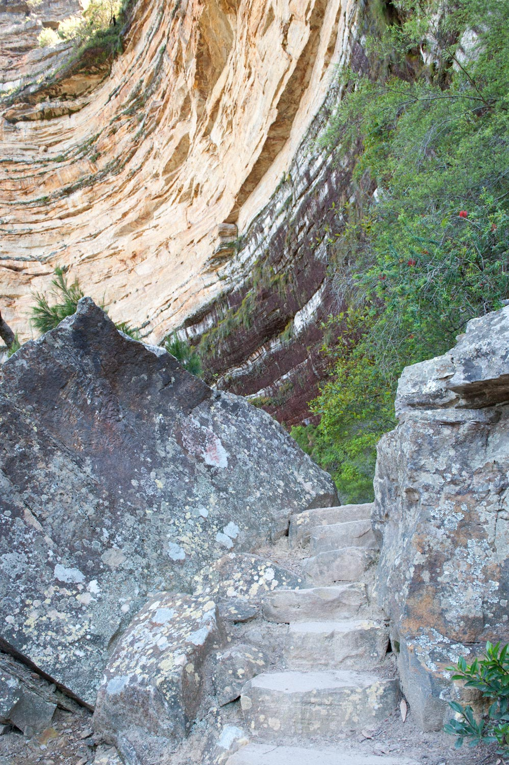 Warren-Hinder-LR-National-Pass-stairs-and-sandstone-wall-PathWentworth-Falls.jpg