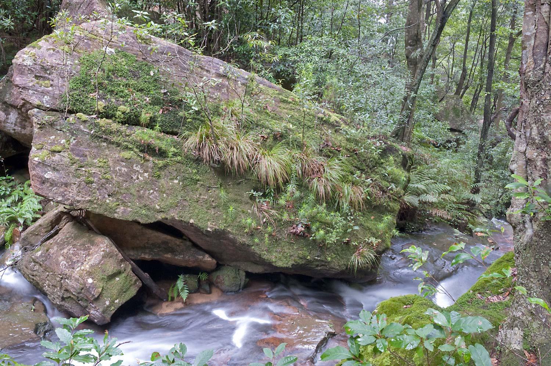 Warren-Hinder-LR-Stream-View-Valley-of-waters-National-pass.jpg