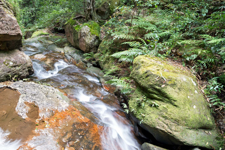 Warren.Hinder-LR-Stream-Valley-of-the-Waters-Wentworth-Falls.jpg