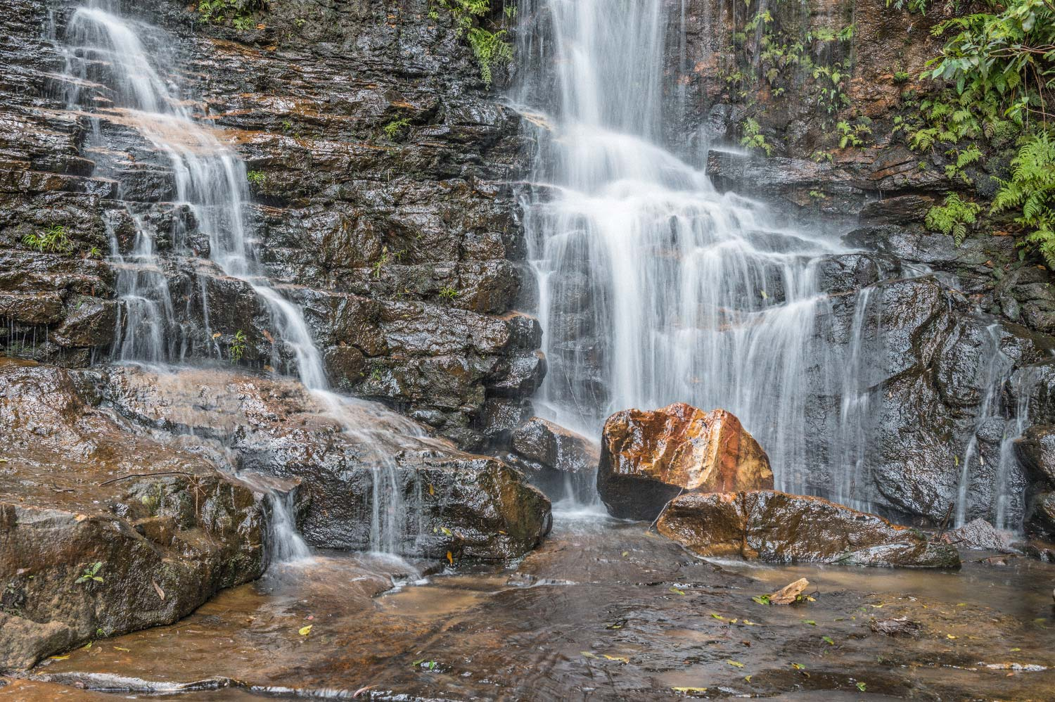 Warren-Hinder-LR-Falls-below-Sylvia-Falls-Wentworth-Falls.jpg