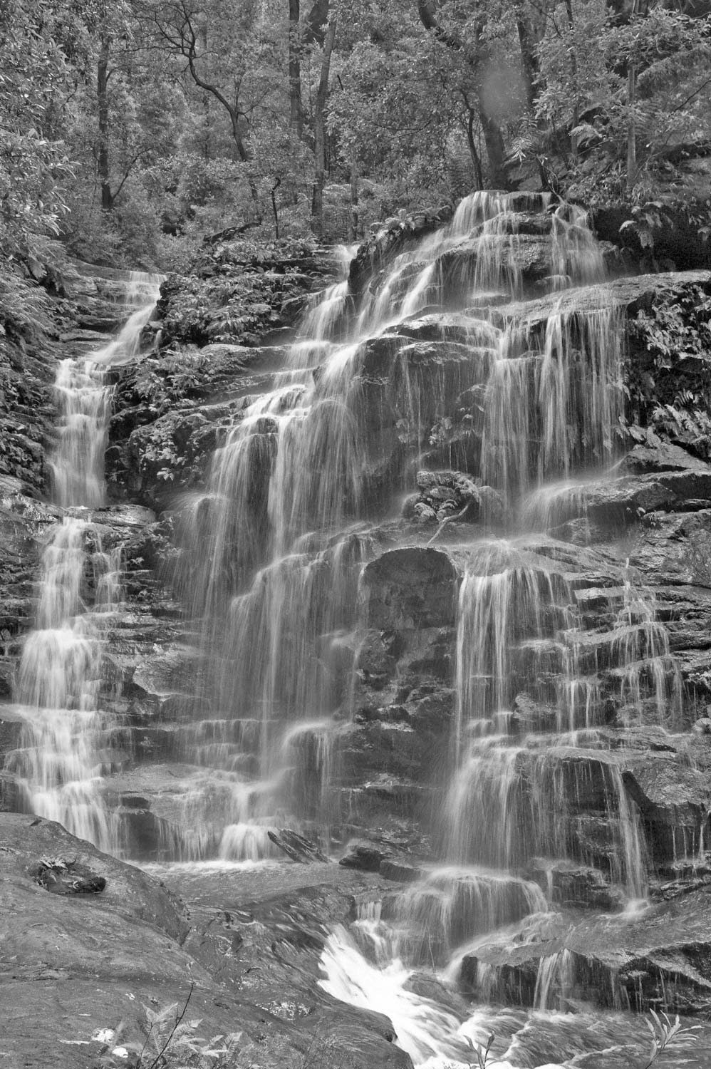Warren-Hinder-LR-Sylvia-Falls-B&W-Valley-Waters.jpg