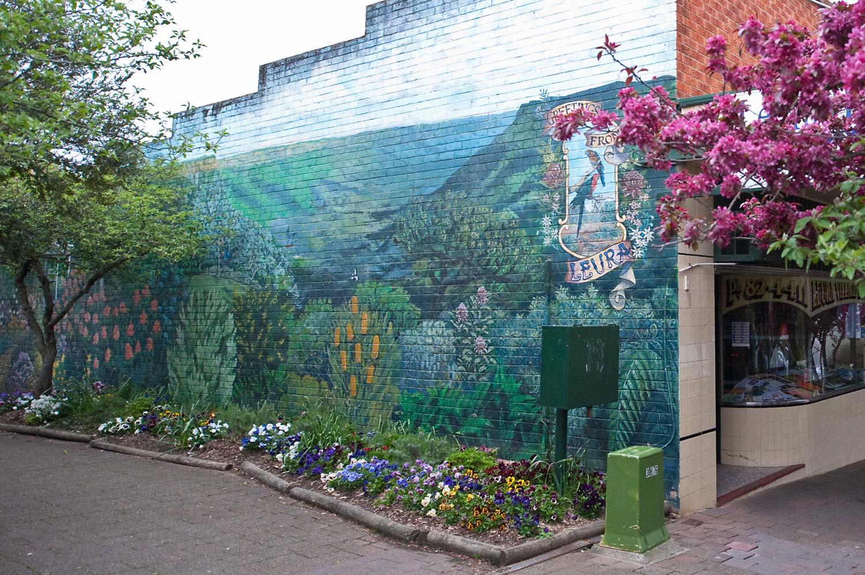 Warren-Hinder-LR-Leura-wall-mural.jpg
