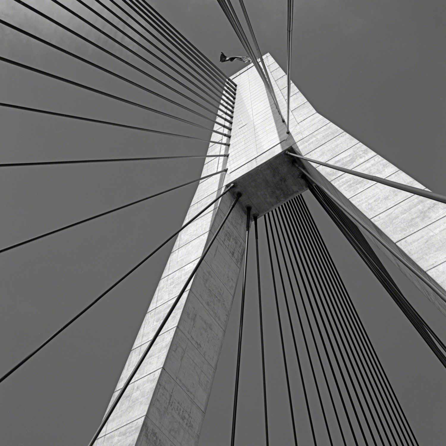 Warren-Hinder-LR-Anzac-Bridge.jpg