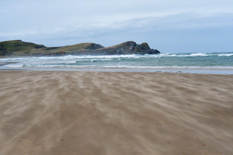 Warren-Hinder-LR-Suret-Bay-Sand-Sculpture.jpg
