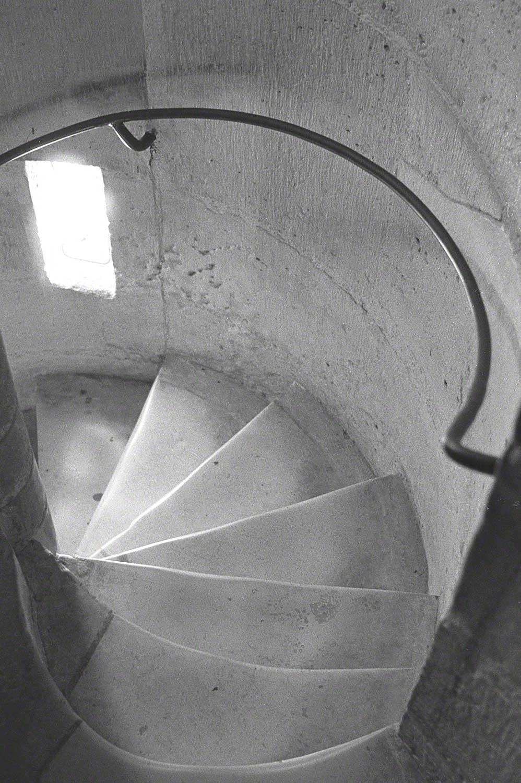 Warren-Hinder-LR-Notre-Dame-stairs.jpg