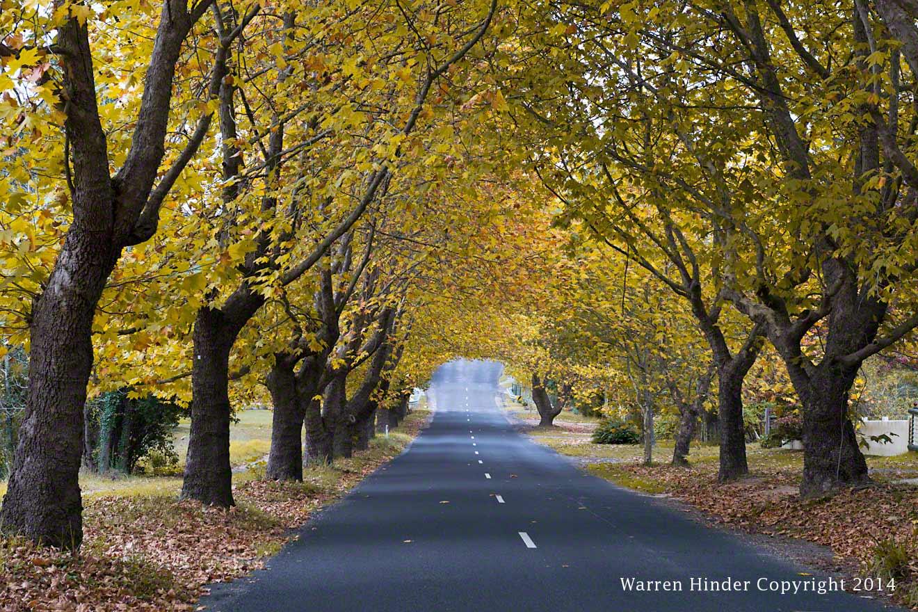 Warren-Hinder-copyright-2014-Down-by-the-lake-Wenty-Falls.jpg