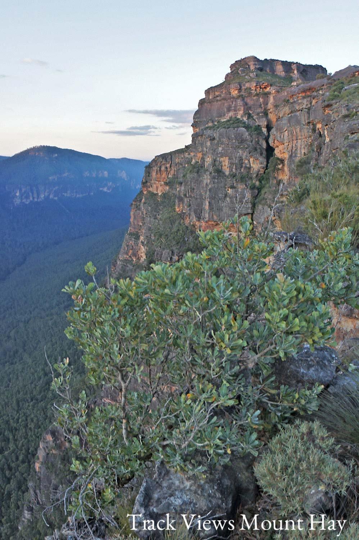 Warren-Hinder-Butterbox-Point-Mt-Hay-looking-East.jpg