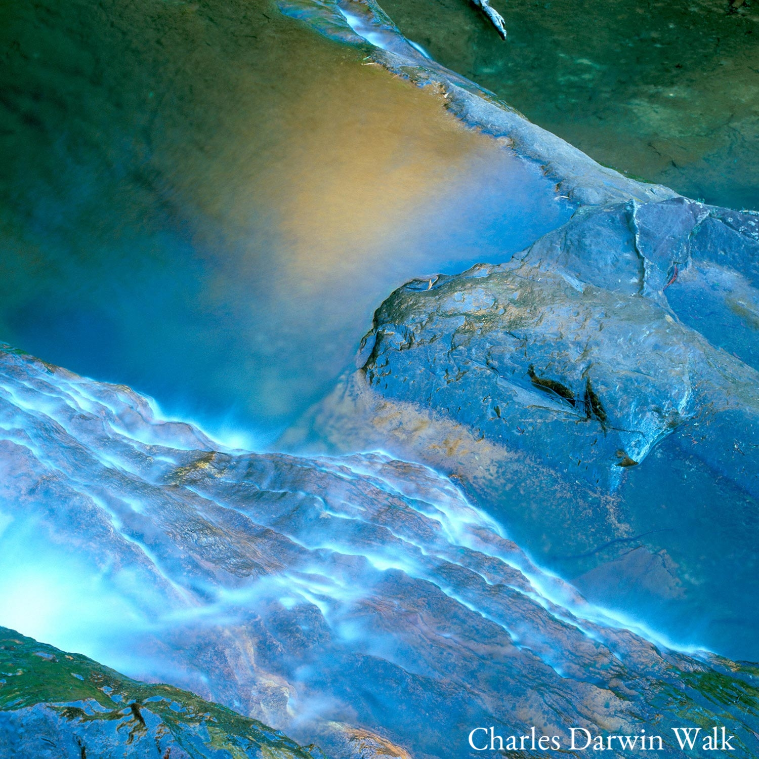 Warren-Hinder-LR-Square-Top-Of-Falls-Charles-Darwin-.jpg