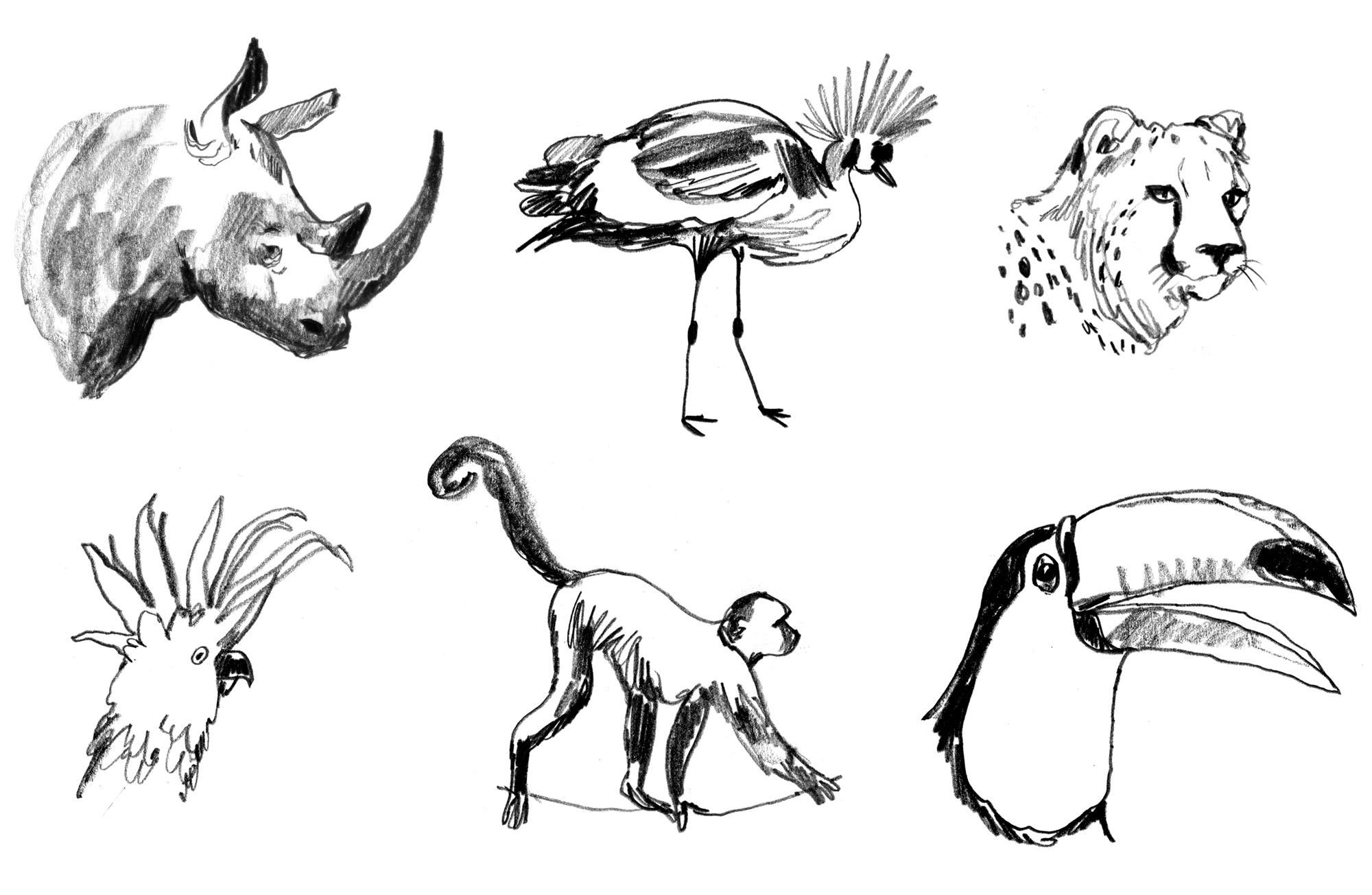 Unpublished Sketches