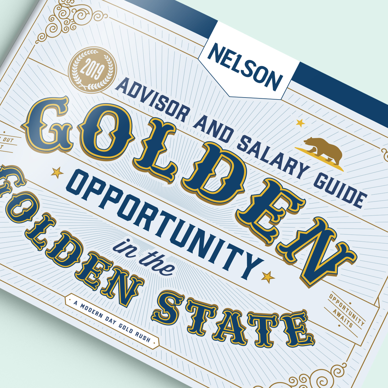 Nelson 2019 Salary Advisor  See More →