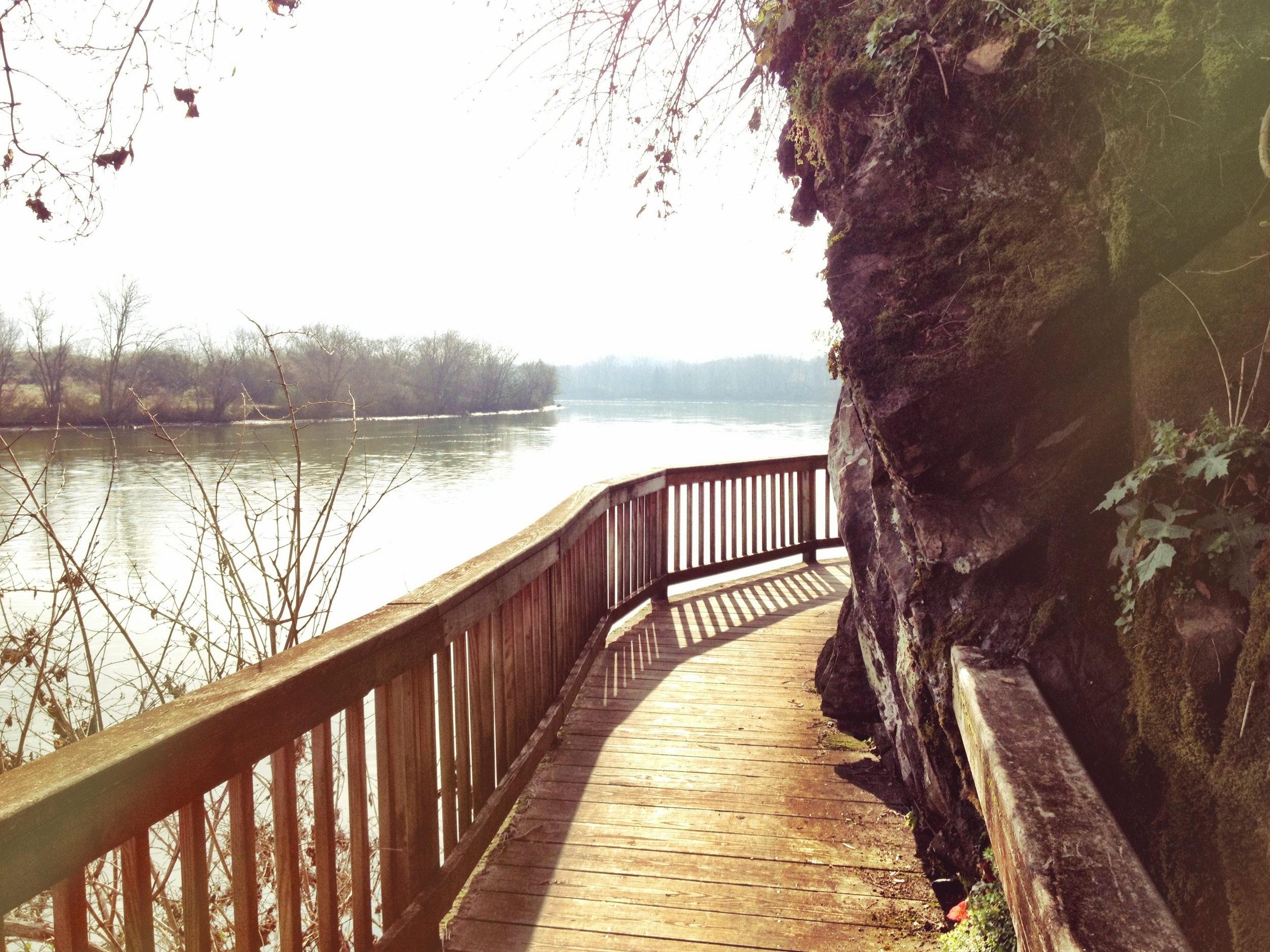 The boardwalk along the River Trail at Ijams Nature Center