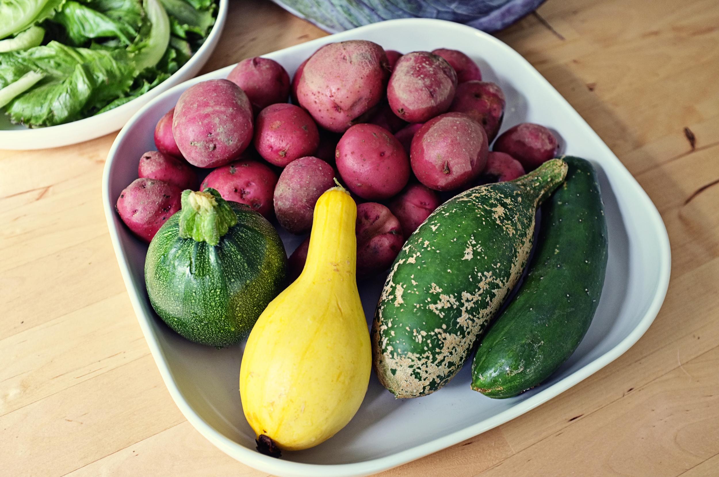Potatoes, cukes, and squash