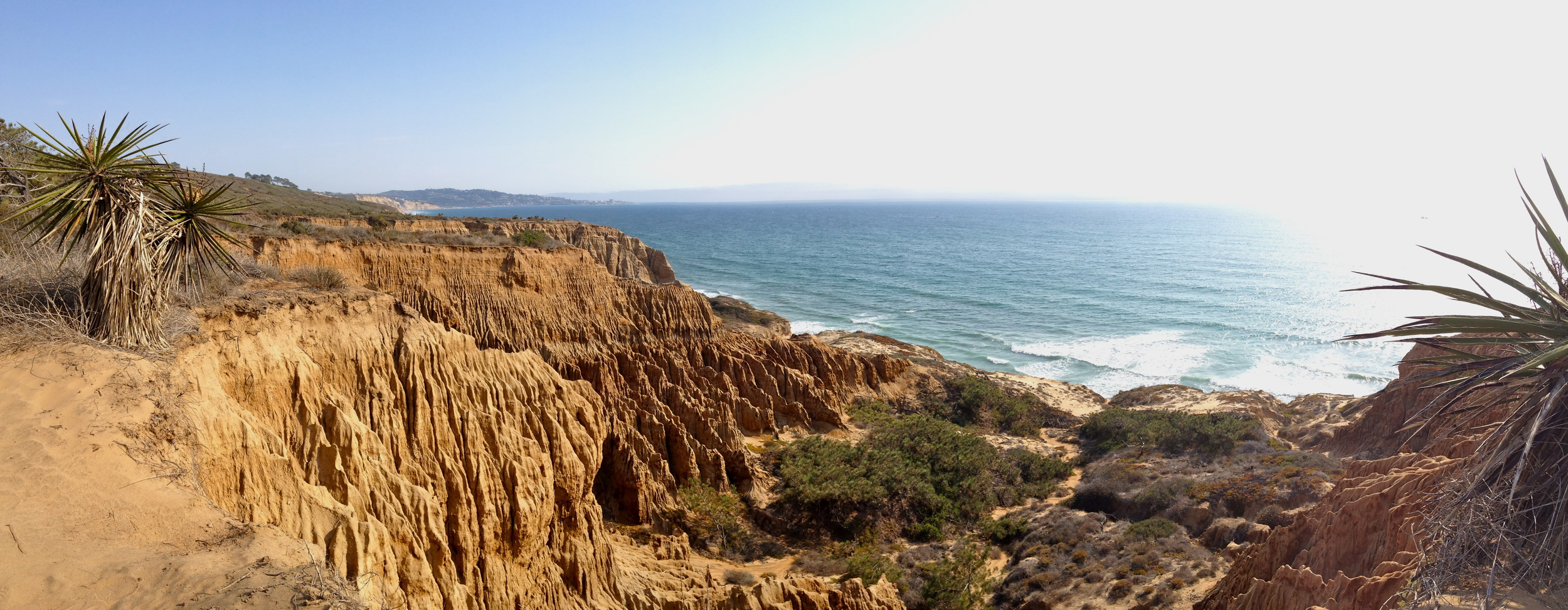 View of the Pacific Ocean from the cliffs at Torrey Pines