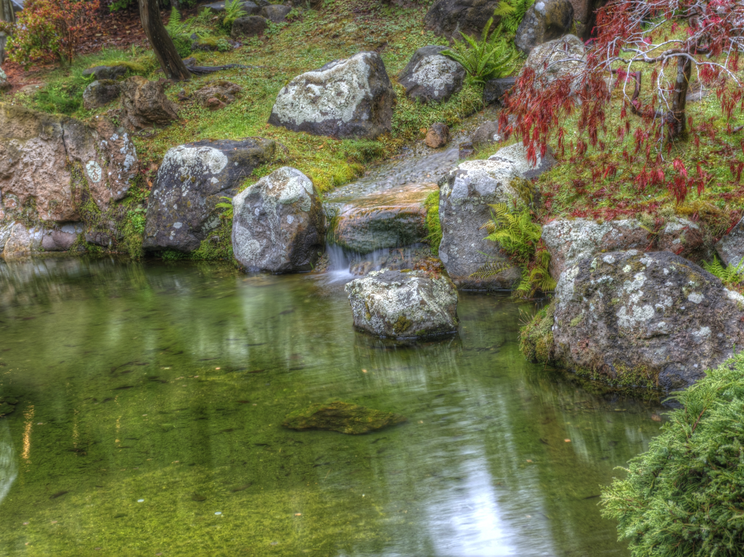 A small waterfall flows into the pond at the Tea Garden.