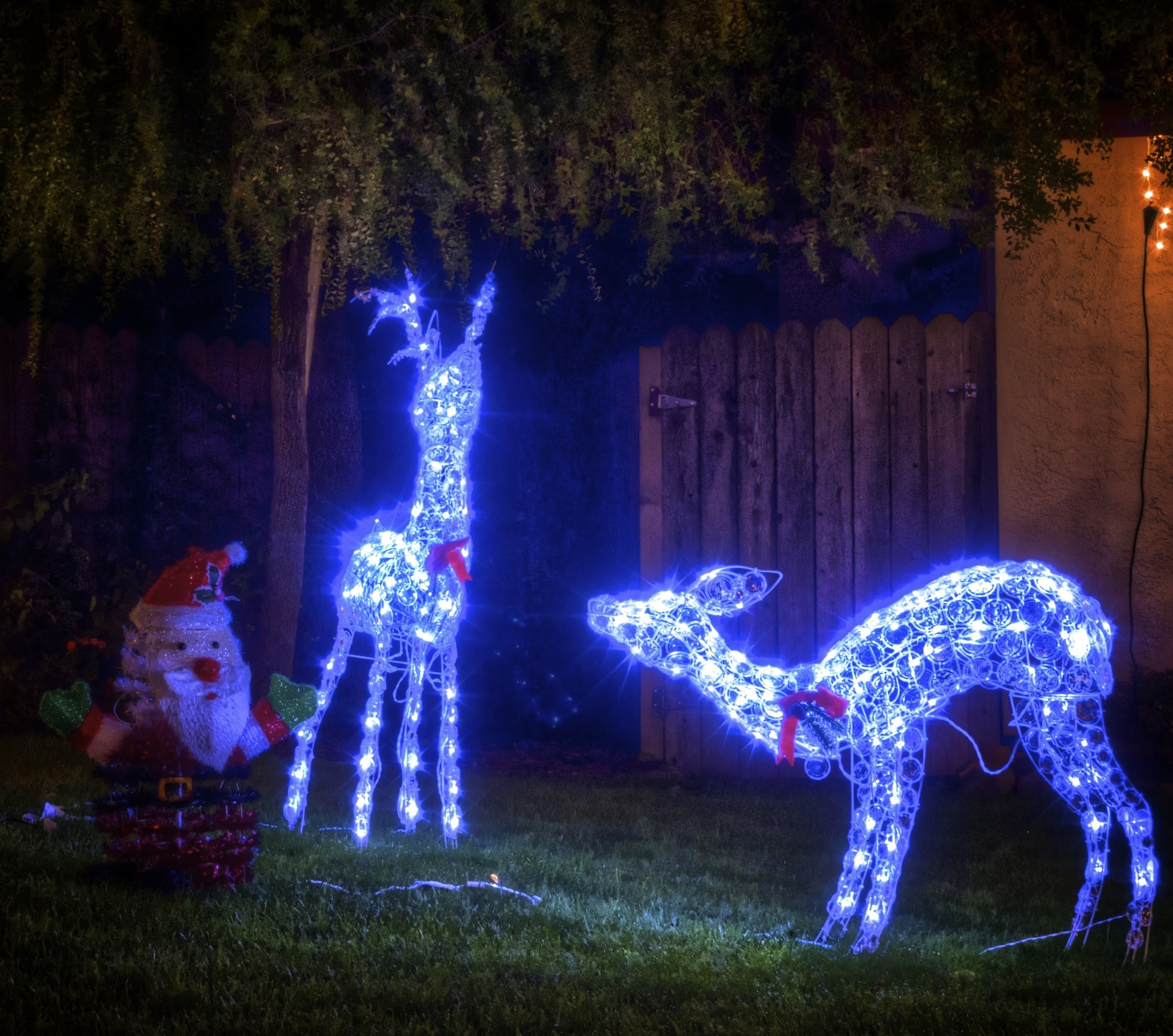 I, for one, welcome our new four legged, glowing overlords.