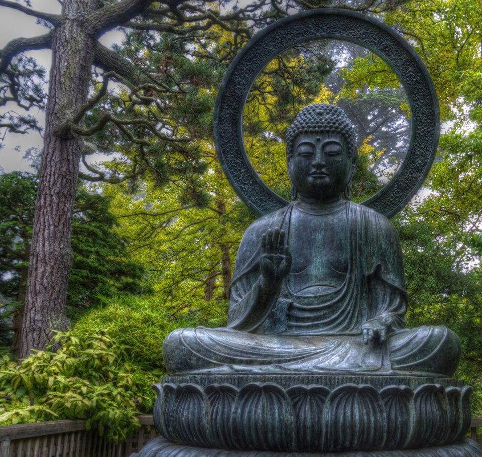 Buddha in the Tea Garden