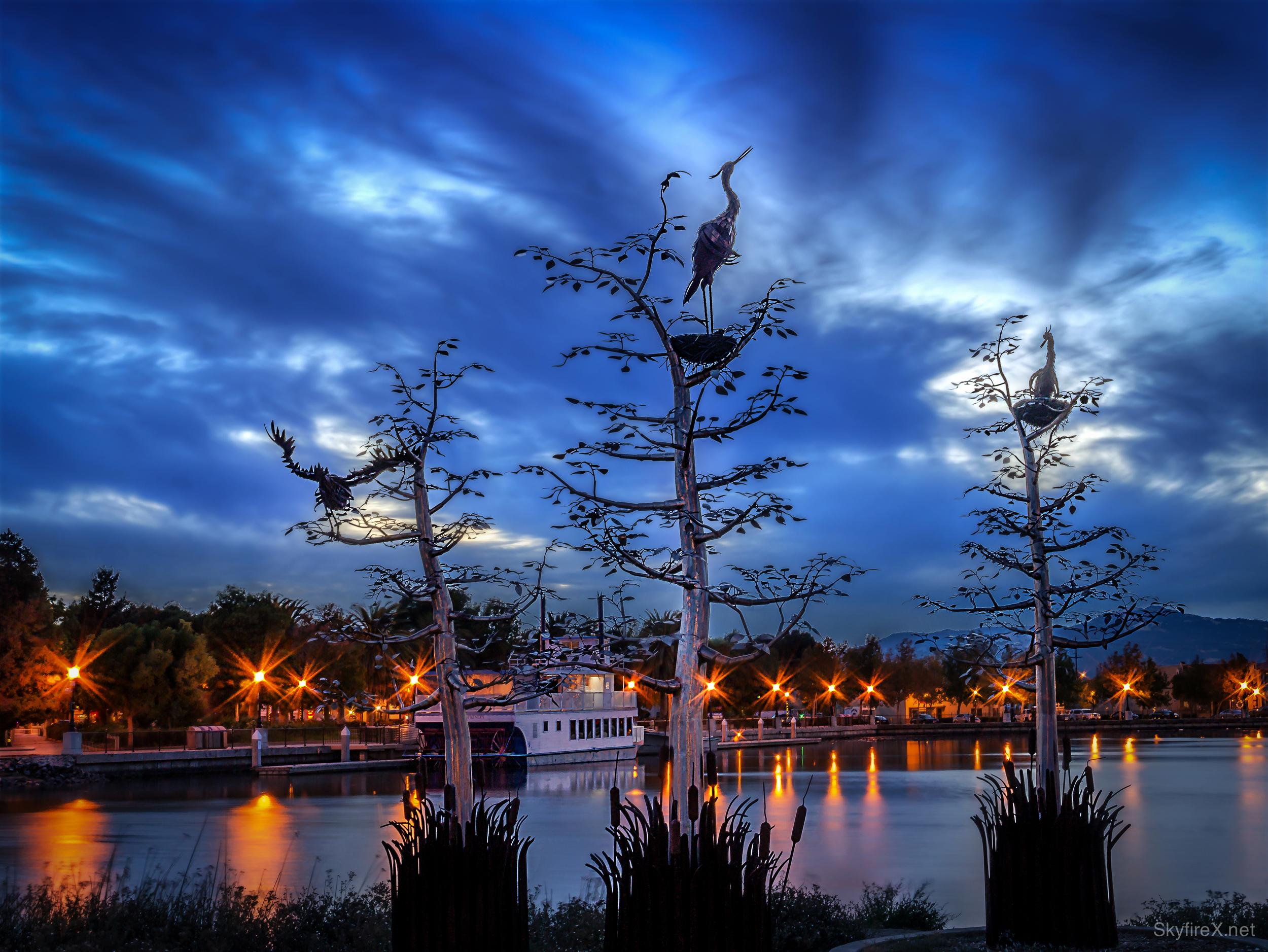 waterfront herons-2.jpg