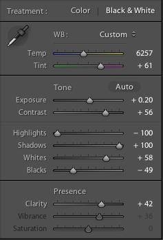 Lightroom basic panel settings