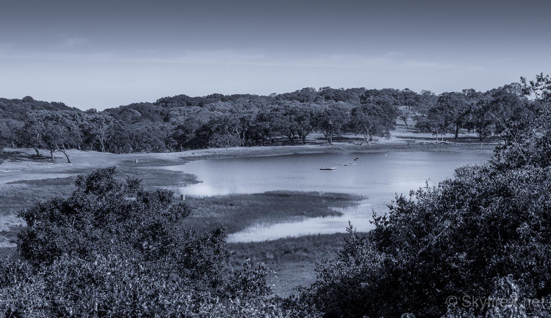rockville-fairfield-monochrome