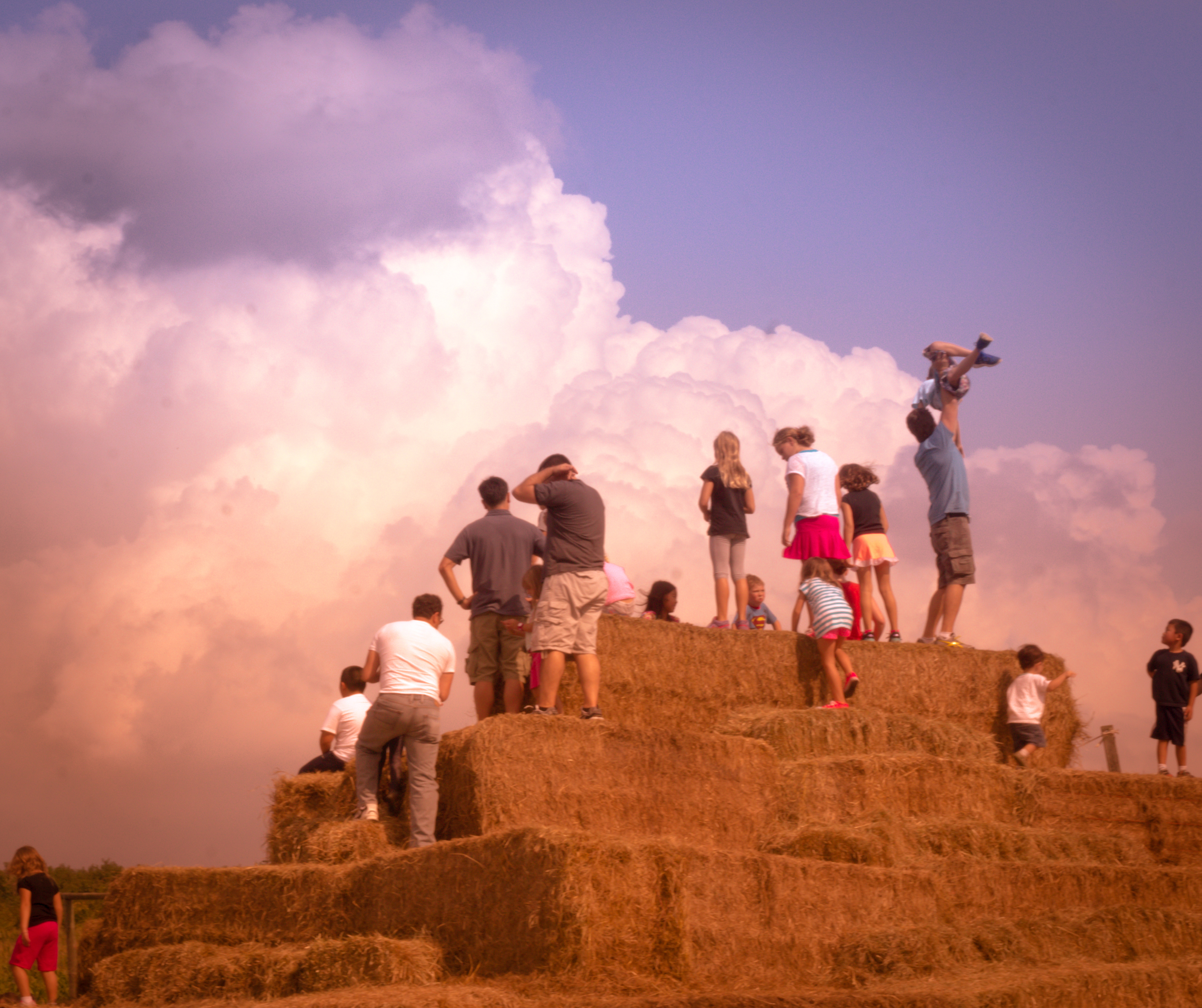 Into the Sky.jpg