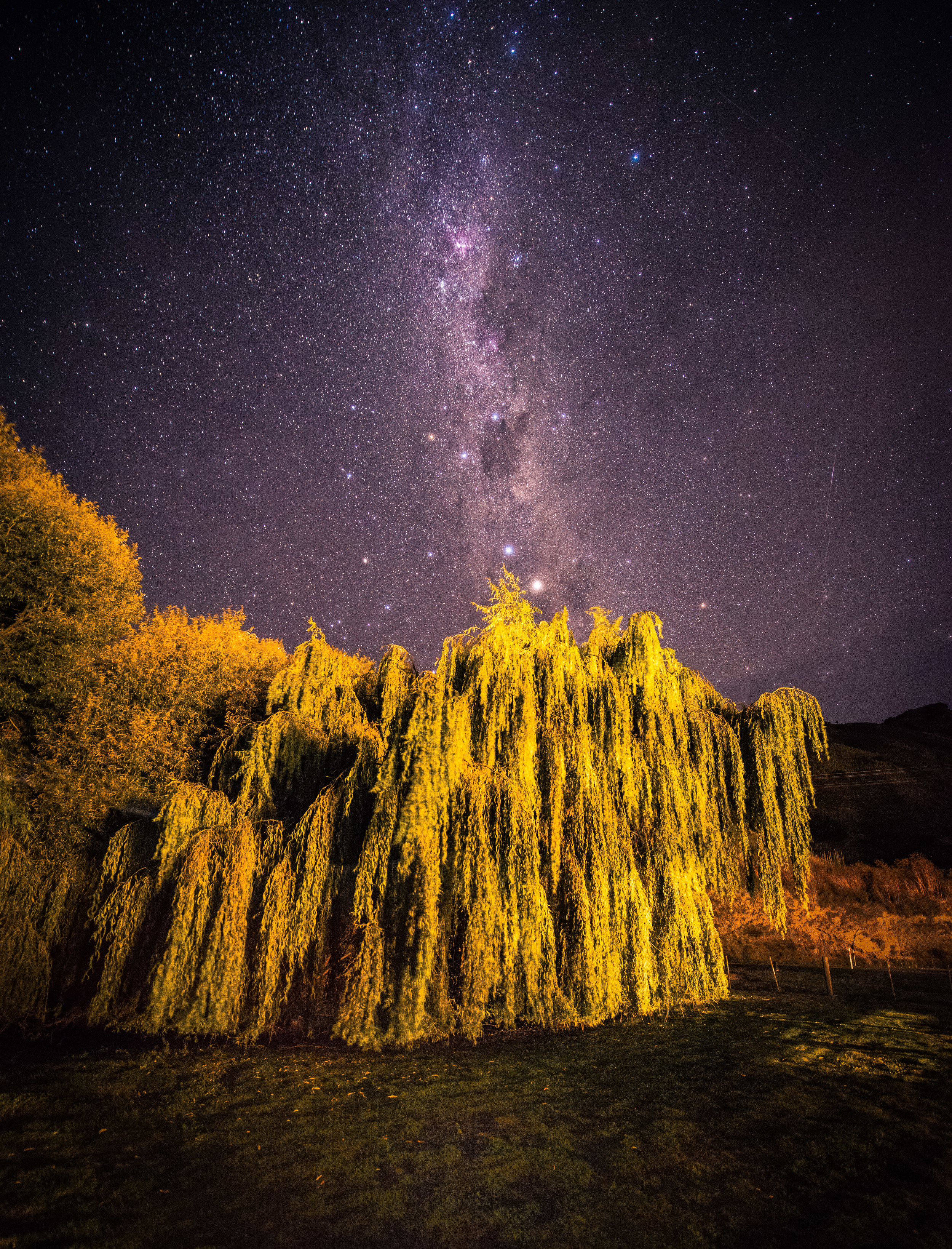 Starry Night in New Zealand