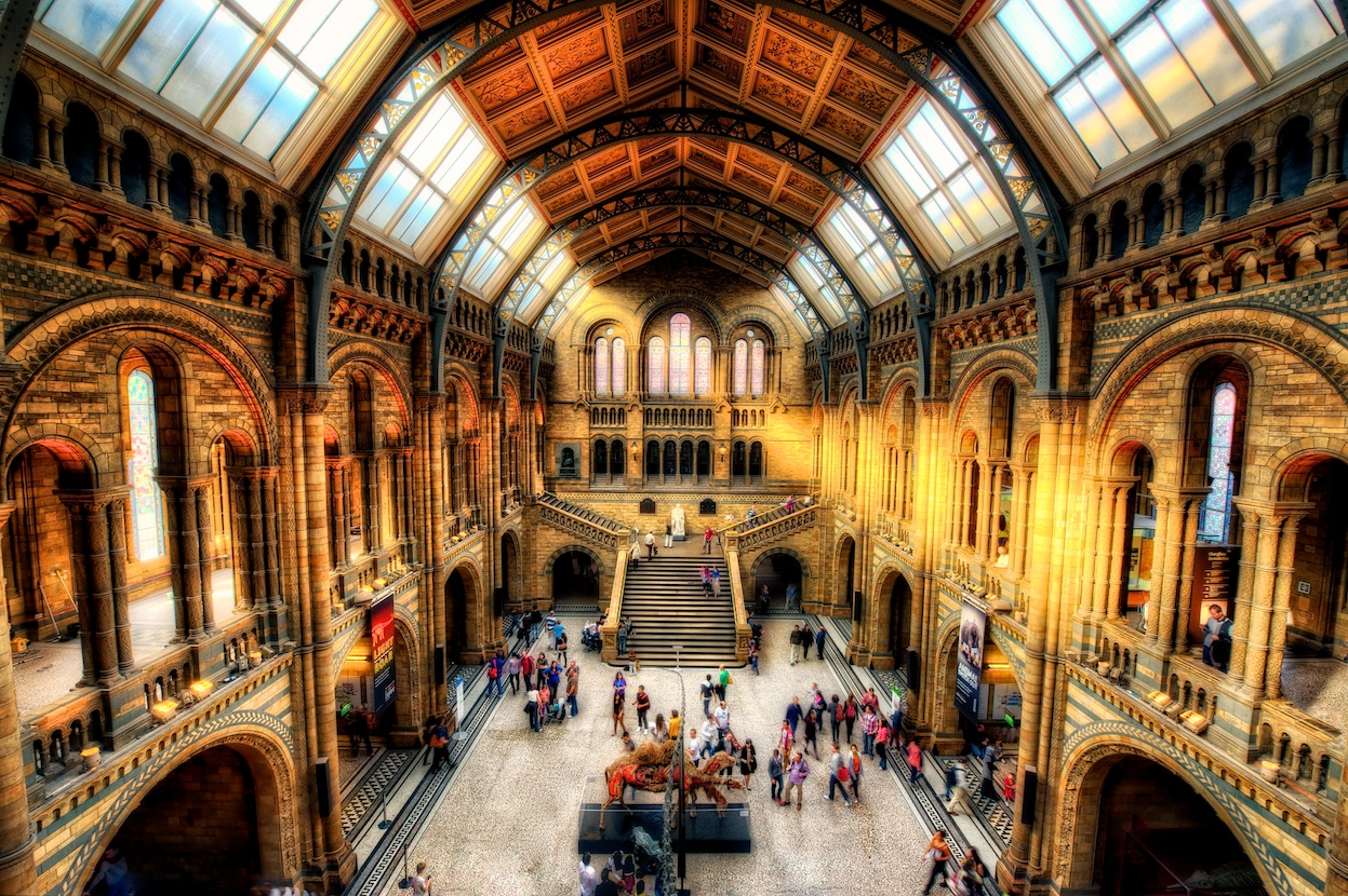 The cavernous interior of the Natural History Museum - don't you want to go see this?