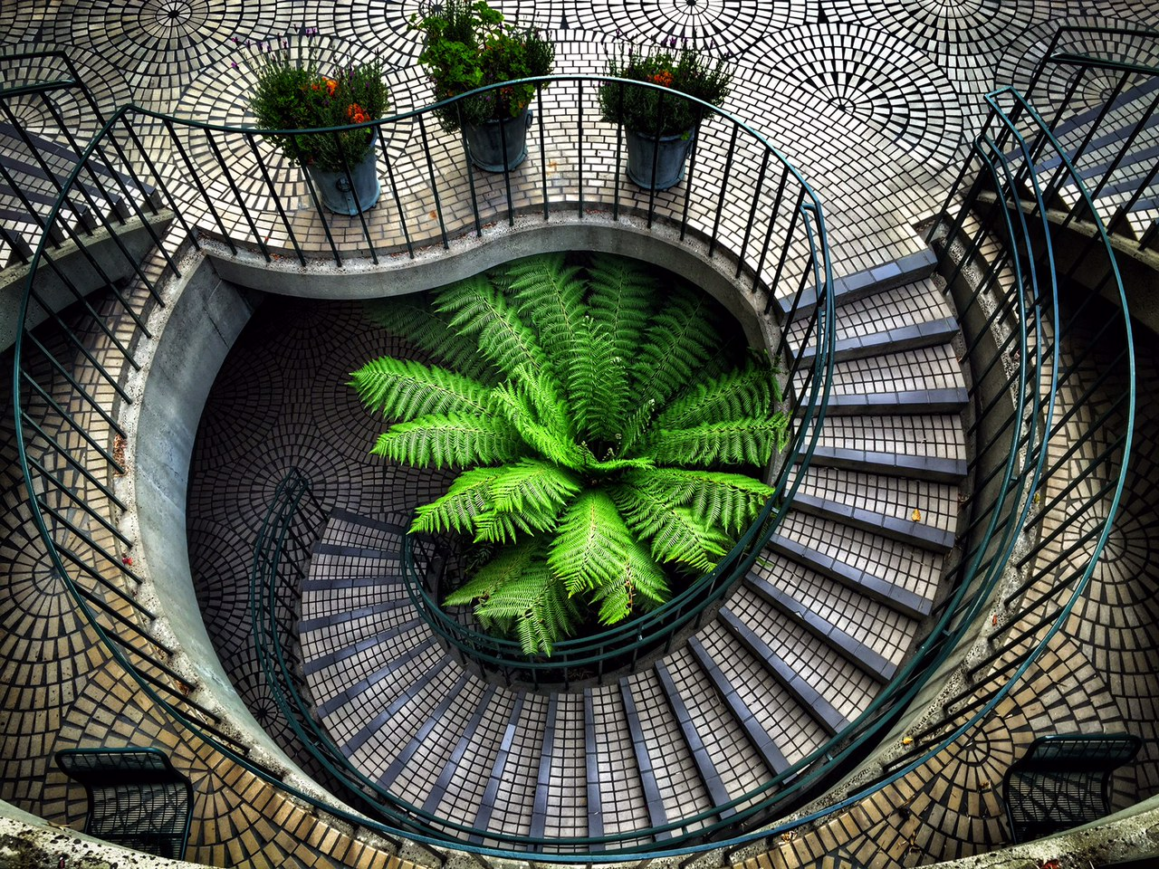 i found a lot of stairs to shoot on this trip! these were in the embarcadero center somewhere. I was just wandering and looked down - click!