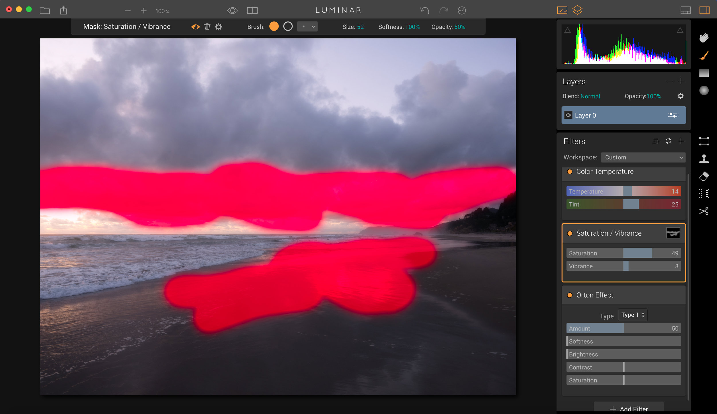 Click on the brush and then the filter you want to mask, and then paint away.