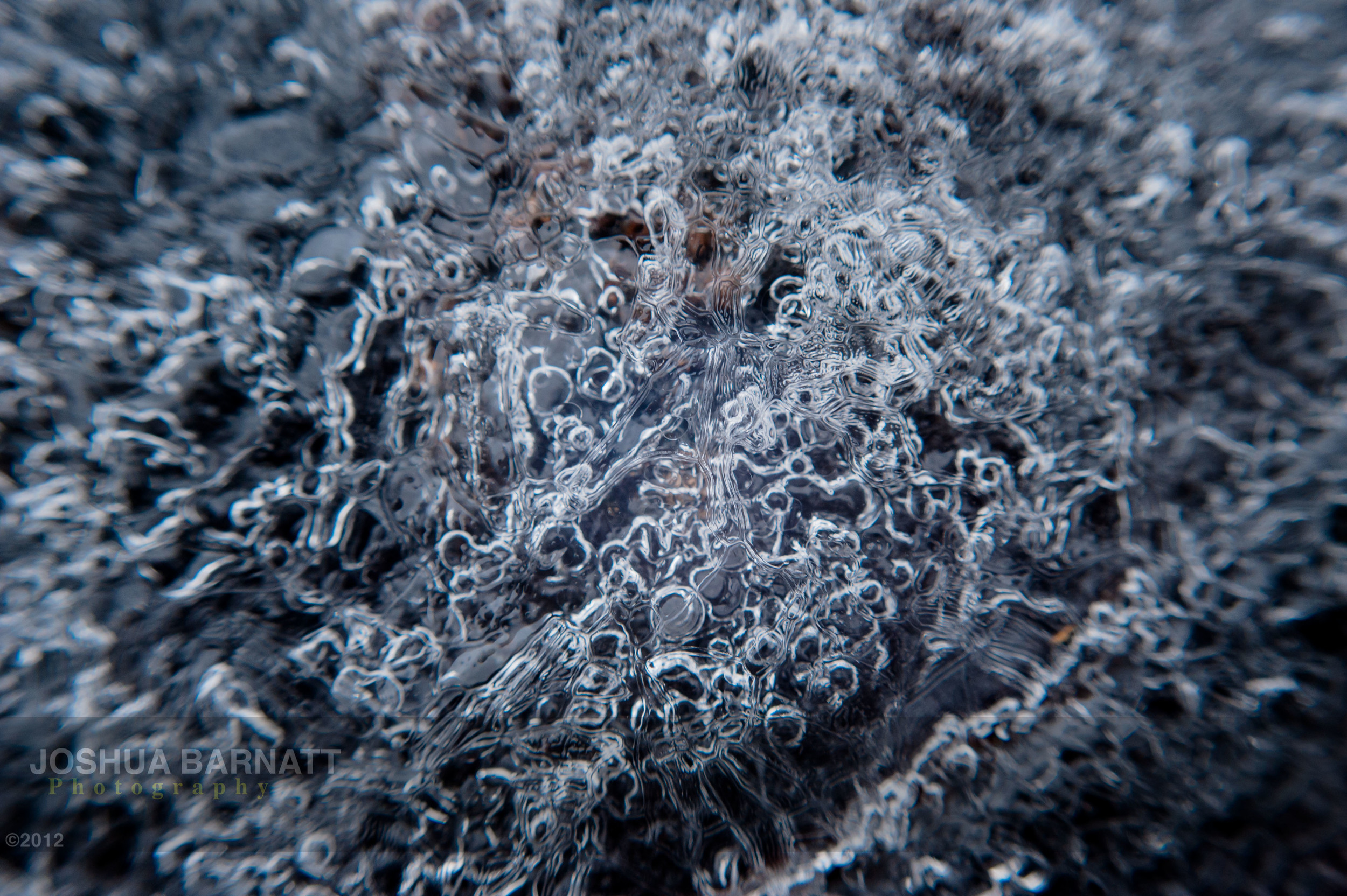 ice B-5735.jpg