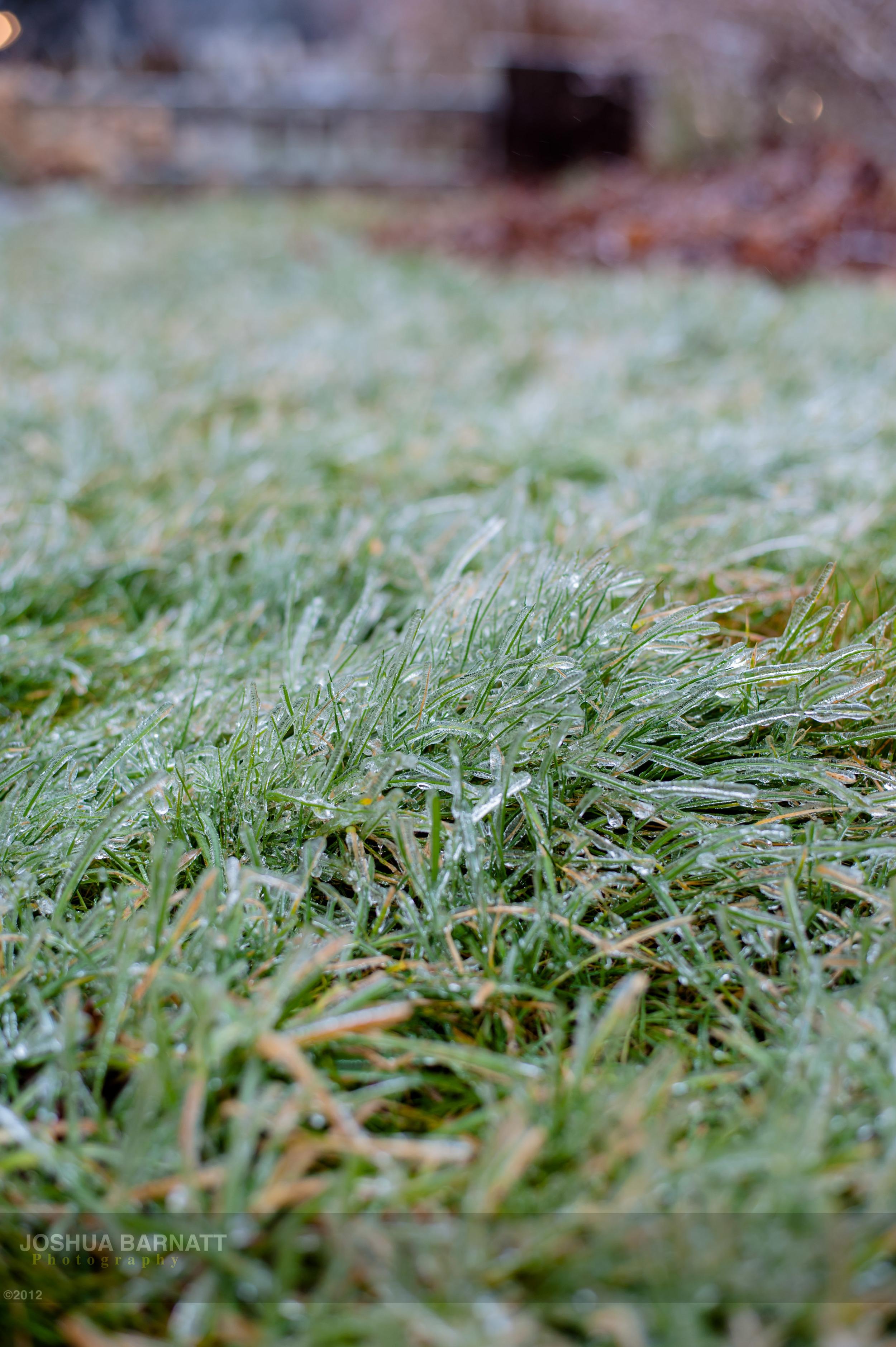 ice B-5743.jpg