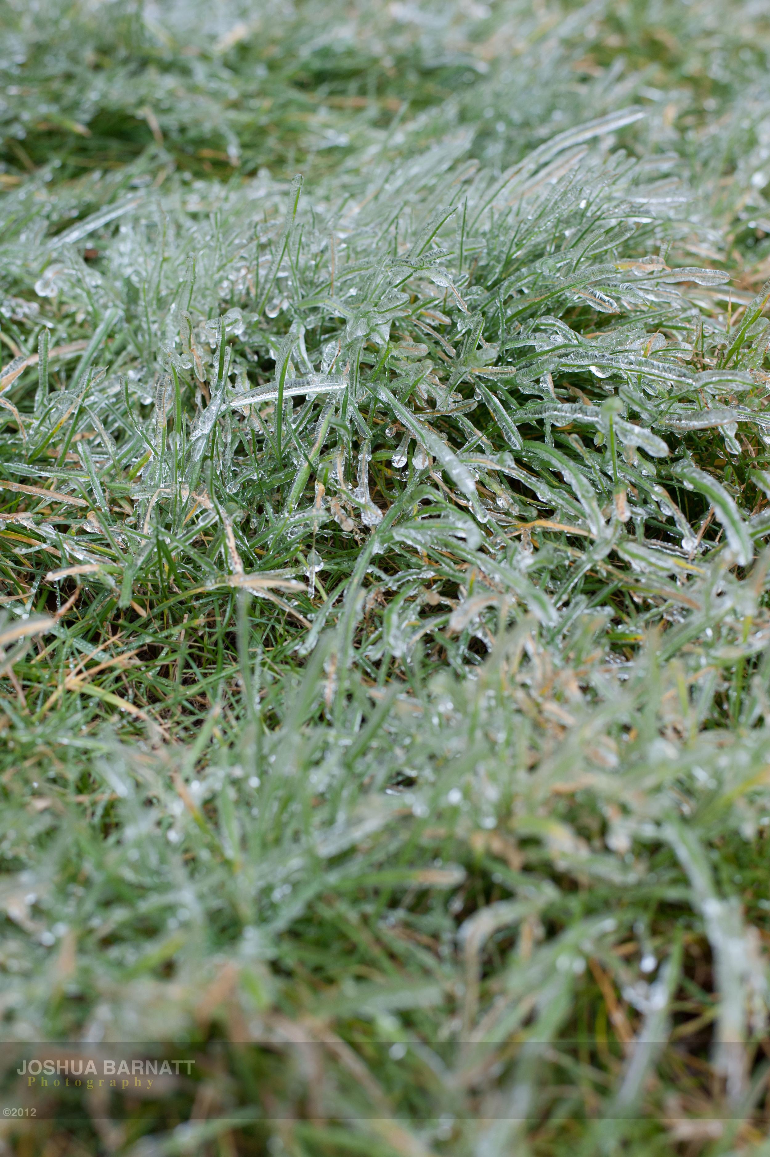 ice B-5752.jpg