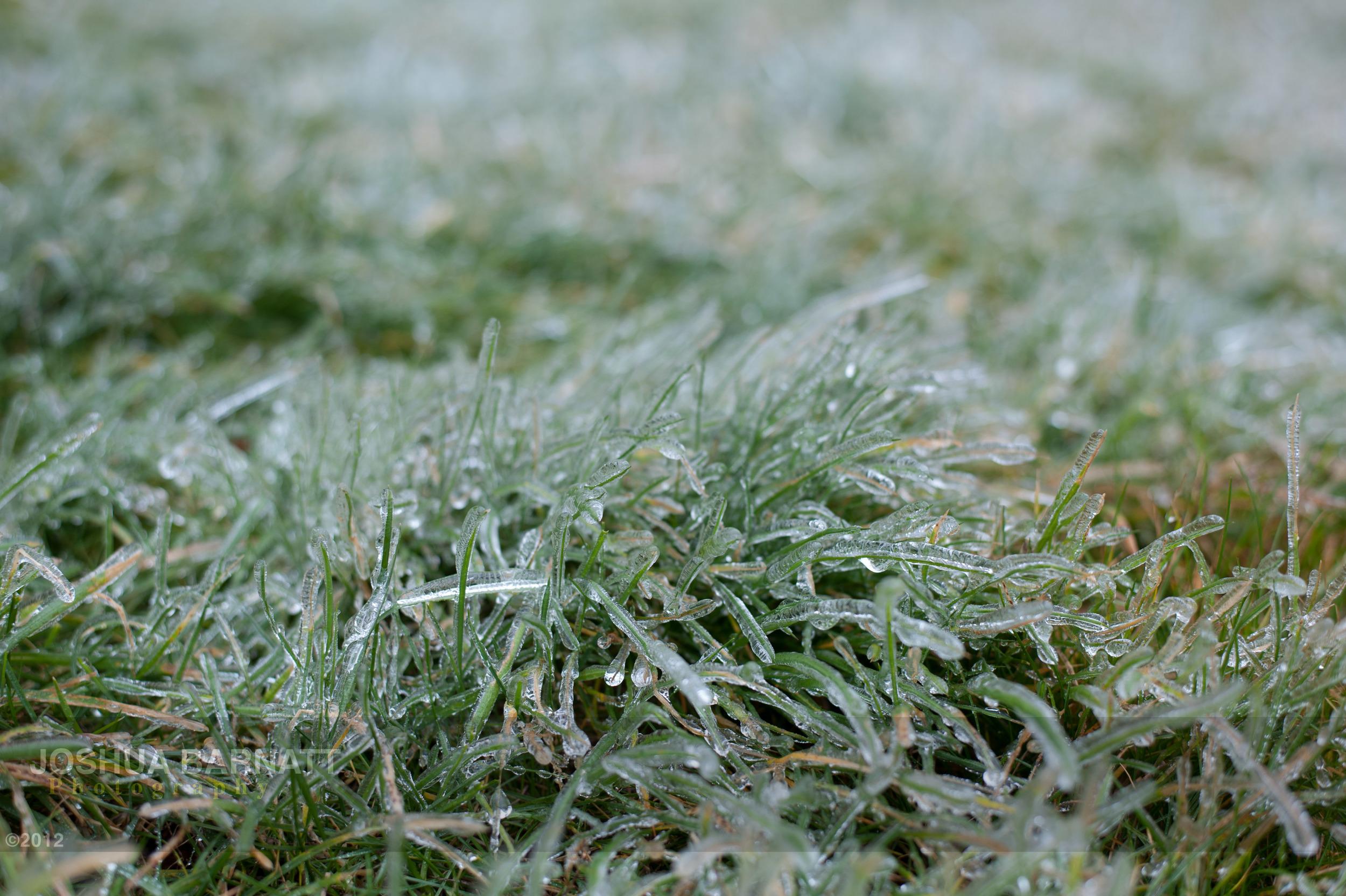 ice B-5756.jpg
