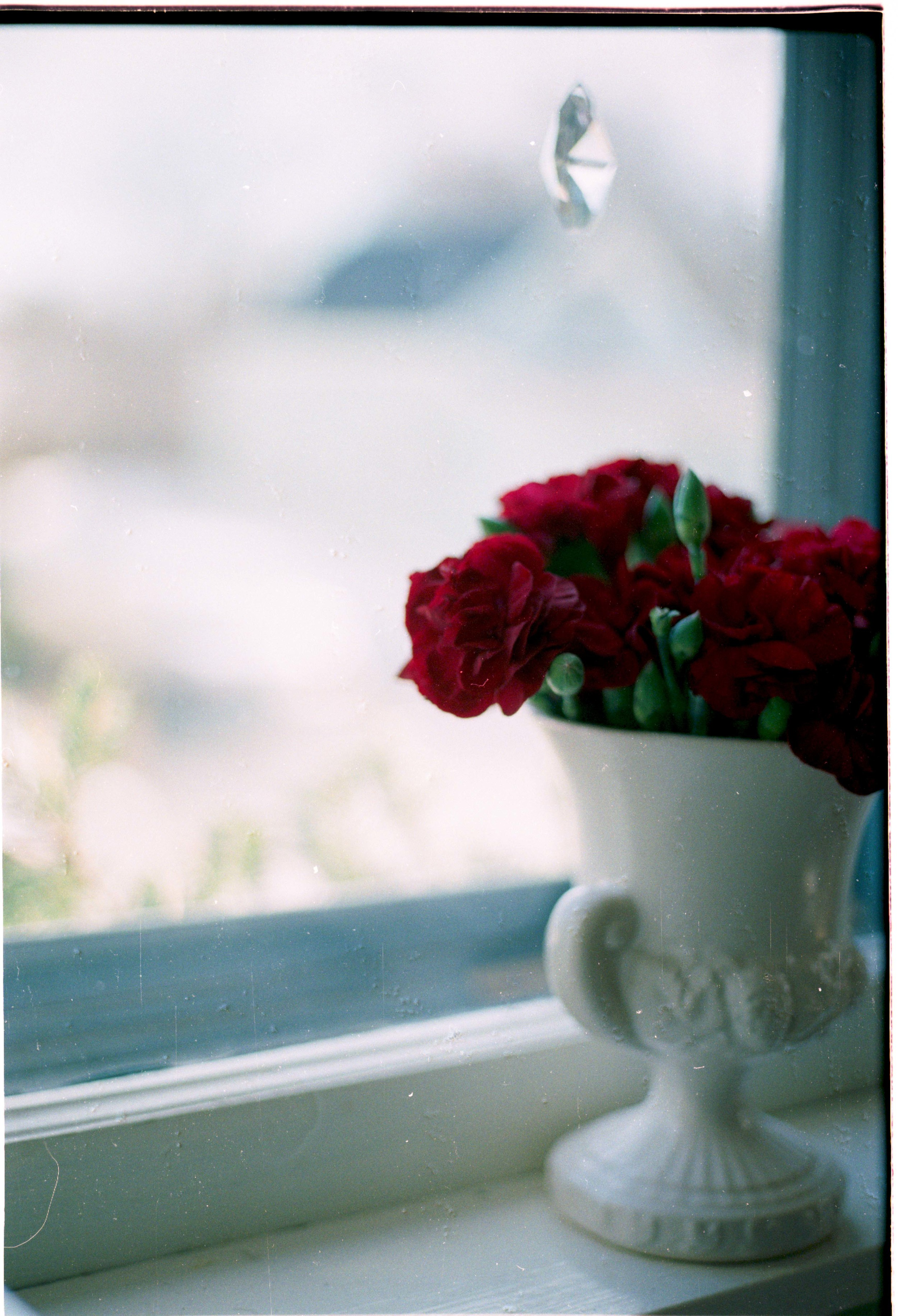 Roses Kitchen Window-1.jpg